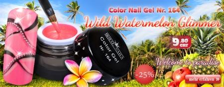 25% Rabatt auf Royal Nails Color Nail Gel Nr. 164 Wild Watermelon Glimmer